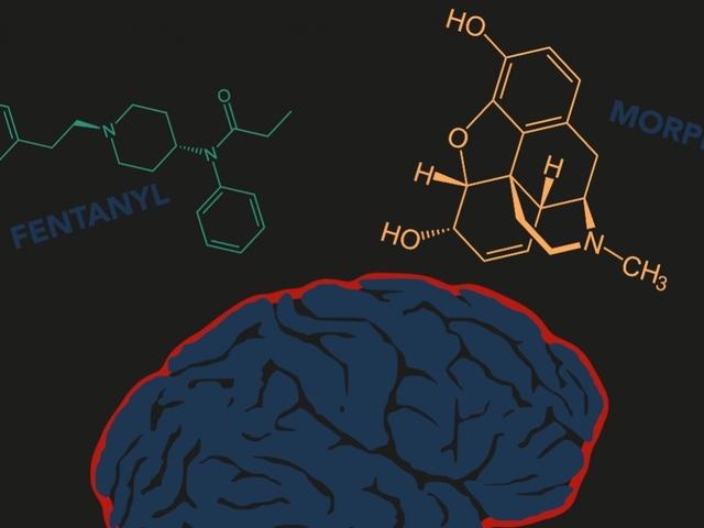 What Makes Fentanyl So Dangerous?