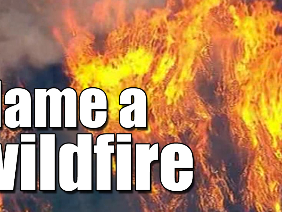 How to name a wildfire