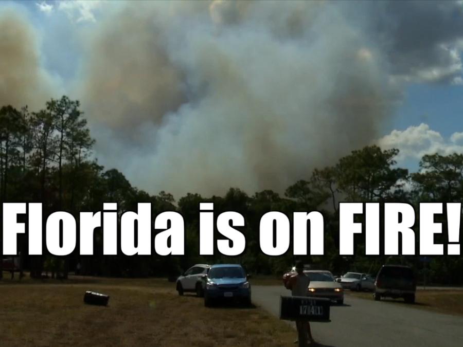 Florida Wildfires Spring 2017
