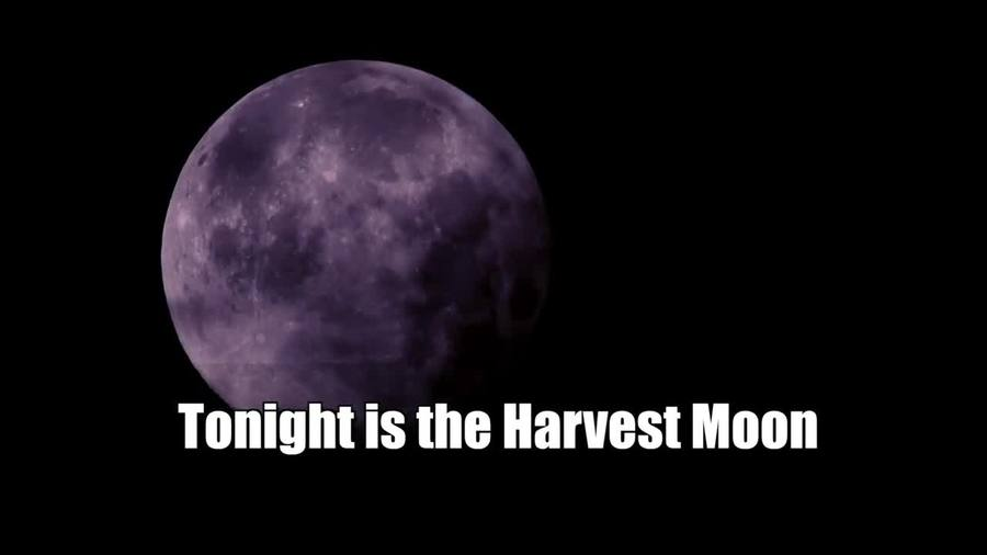 Harvest Moon- What is it-