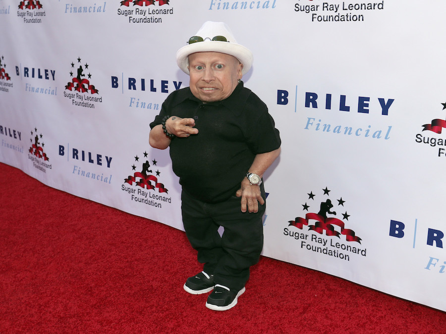Verne Troyer passes away at 49