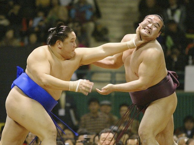 Japan Sumo Association May Reconsider Its Ban On Women In The Ring