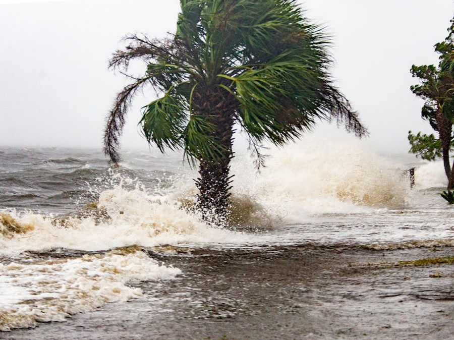 Hurricane Michael makes landfall with 155-mph winds in Florida Panhandle - WCPO ...